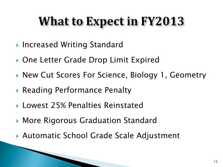 What to Expect in FY2013