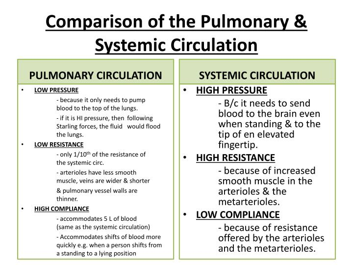 Pulmonary Circulation Pulmonary Edema Pleural Fluid on blood circulatory system ppt