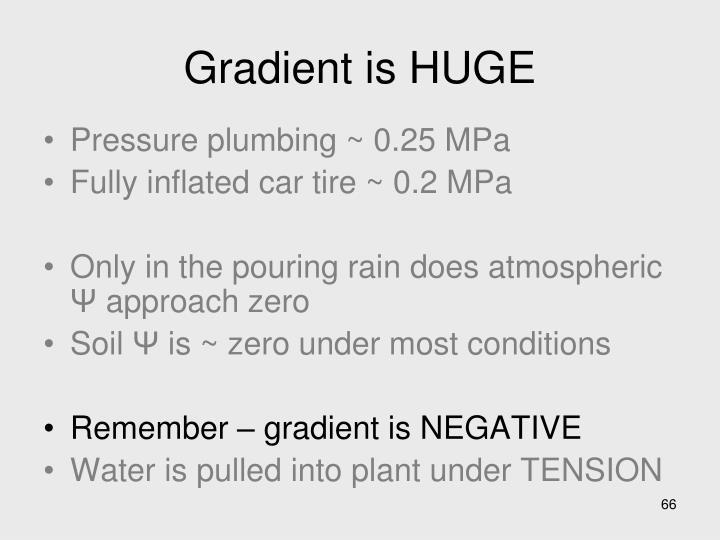 Gradient is HUGE