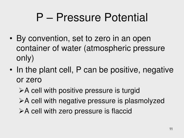 P – Pressure Potential