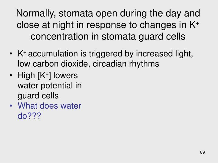 Normally, stomata open during the day and close at night in response to changes in K
