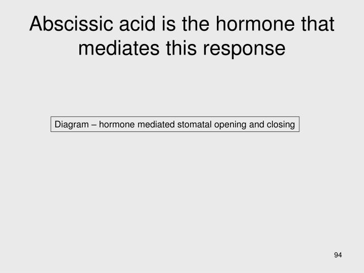 Abscissic acid is the hormone that mediates this response