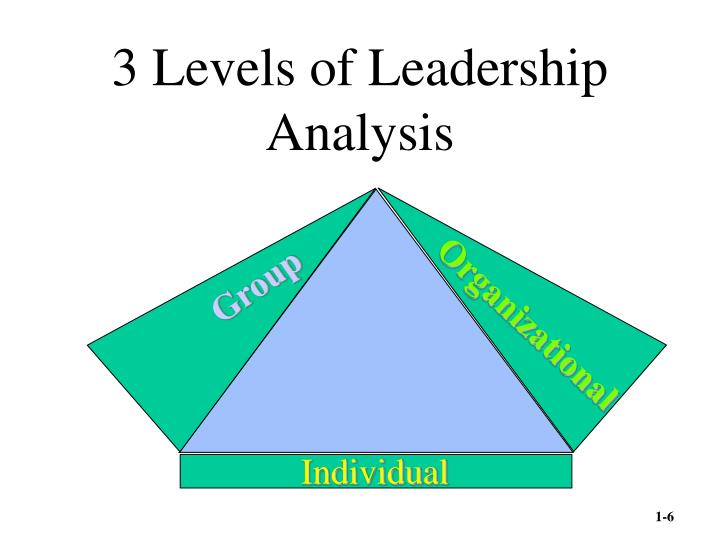 3 Levels of Leadership Analysis