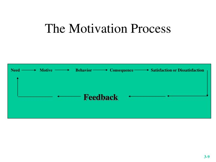 The Motivation Process
