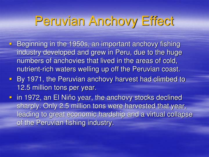 Peruvian Anchovy Effect