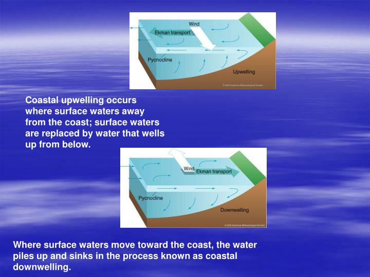 Coastal upwelling occurs where surface waters away from the coast; surface waters are replaced by water that wells up from below.