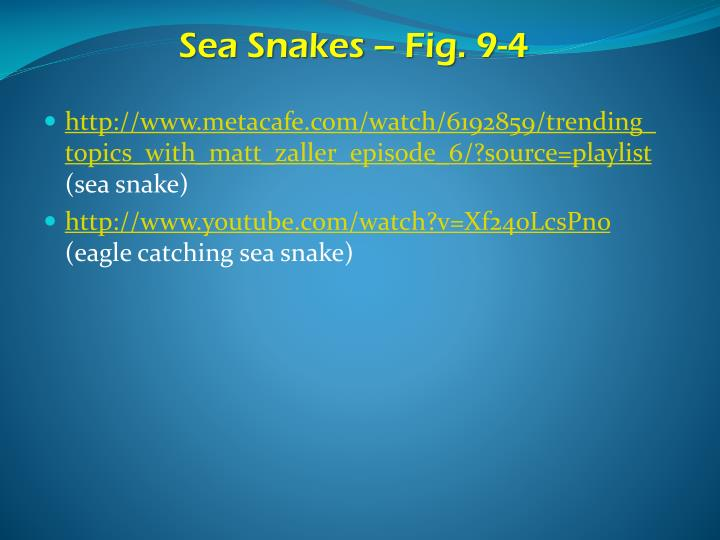 Sea Snakes – Fig. 9-4