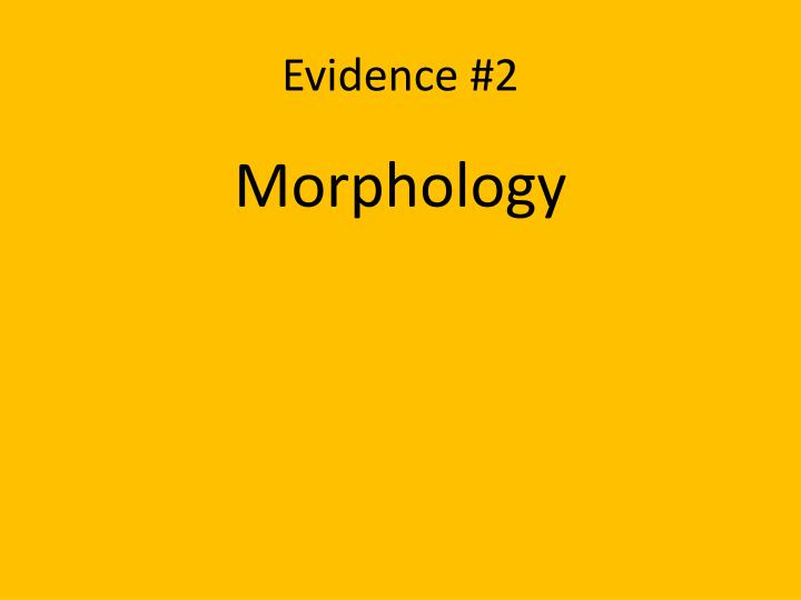 Evidence #2