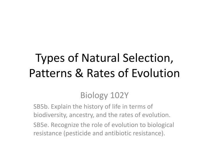 Types of Natural Selection, Patterns & Rates of Evolution