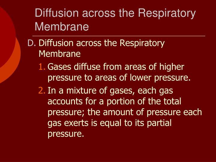 Diffusion across the Respiratory Membrane