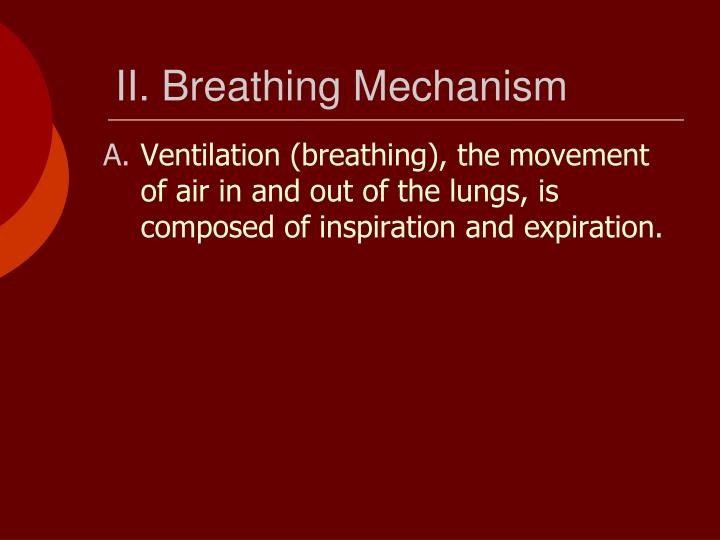 II. Breathing Mechanism
