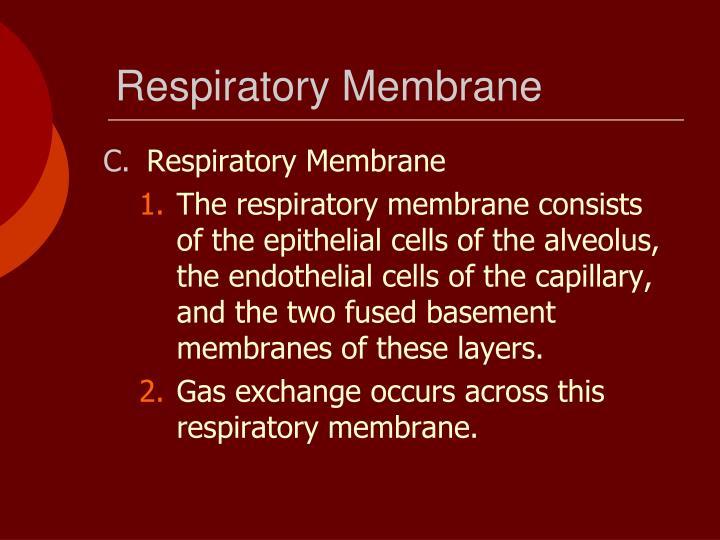 Respiratory Membrane