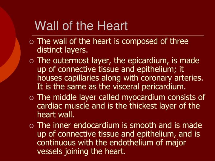 Wall of the Heart