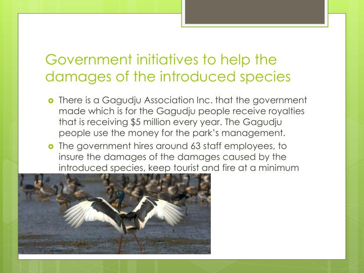 Government initiatives to help the damages of the introduced species