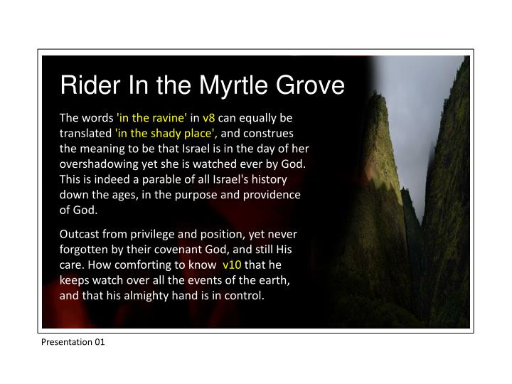 Rider In the Myrtle Grove