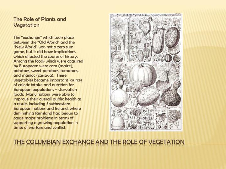 The Role of Plants and Vegetation