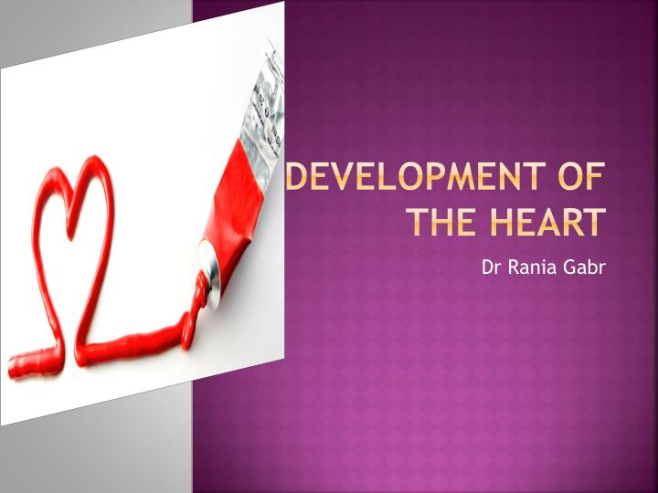 Development of the heart
