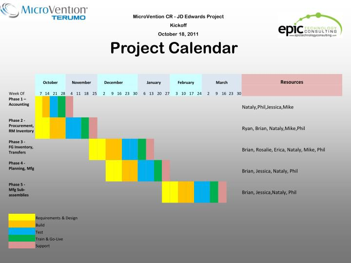 MicroVention CR - JD Edwards Project