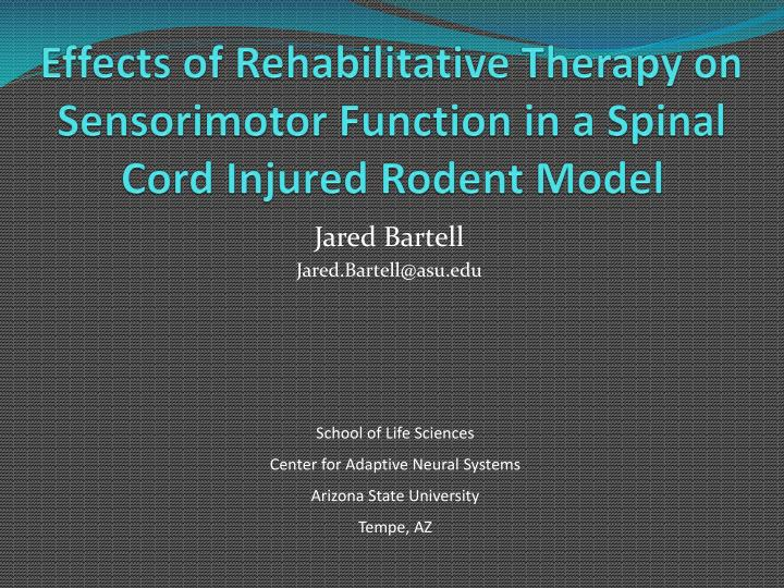 Effects of rehabilitative therapy on sensorimotor function in a spinal cord injured rodent model