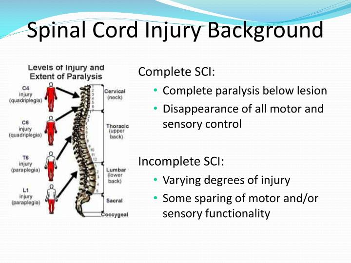 Spinal Cord Injury Background