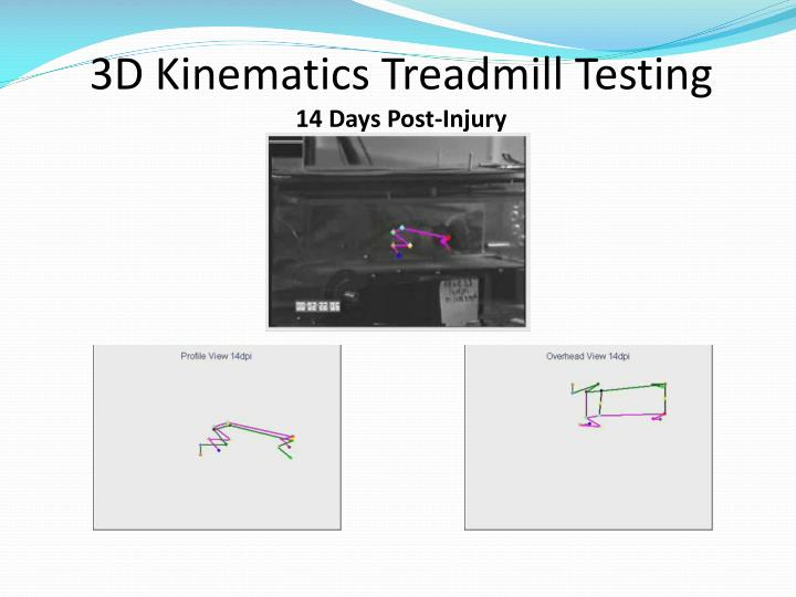3D Kinematics Treadmill Testing