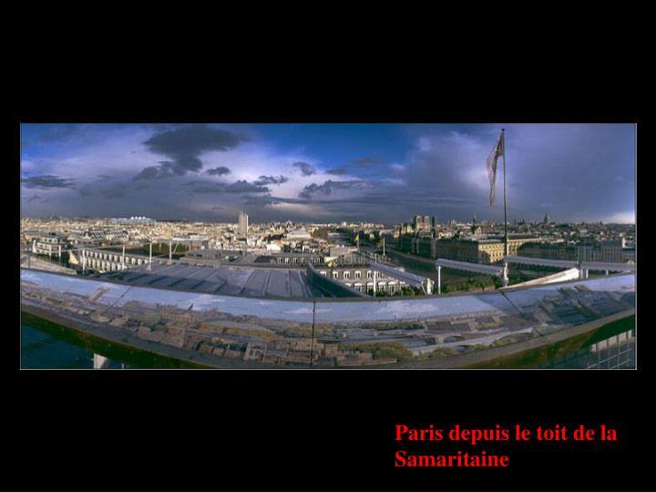 Paris depuis le toit de la Samaritaine