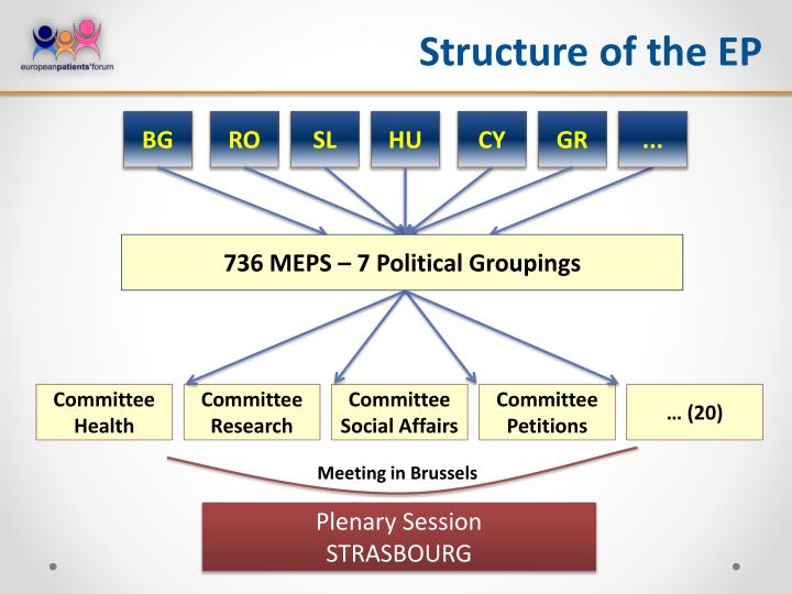 Structure of the EP