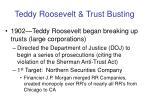 teddy roosevelt trust busting