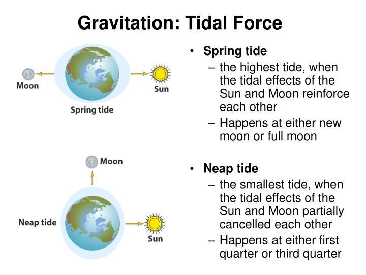 Gravitation: Tidal Force
