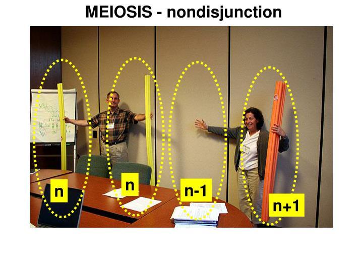 MEIOSIS - nondisjunction