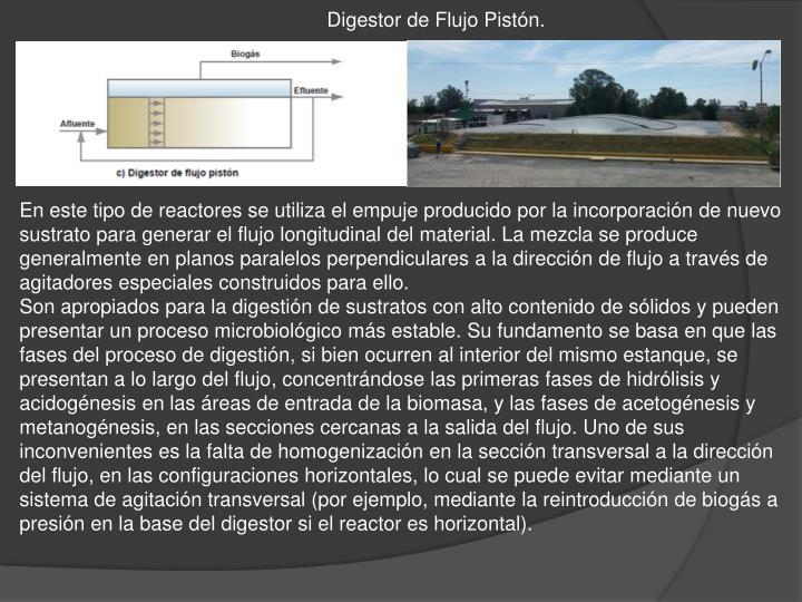 Digestor de Flujo Pistón.