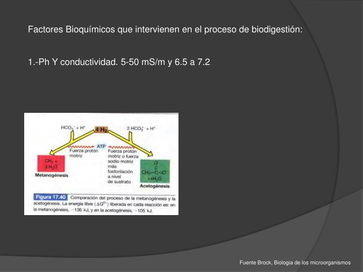 Factores Bioquímicos que intervienen en el proceso de biodigestión: