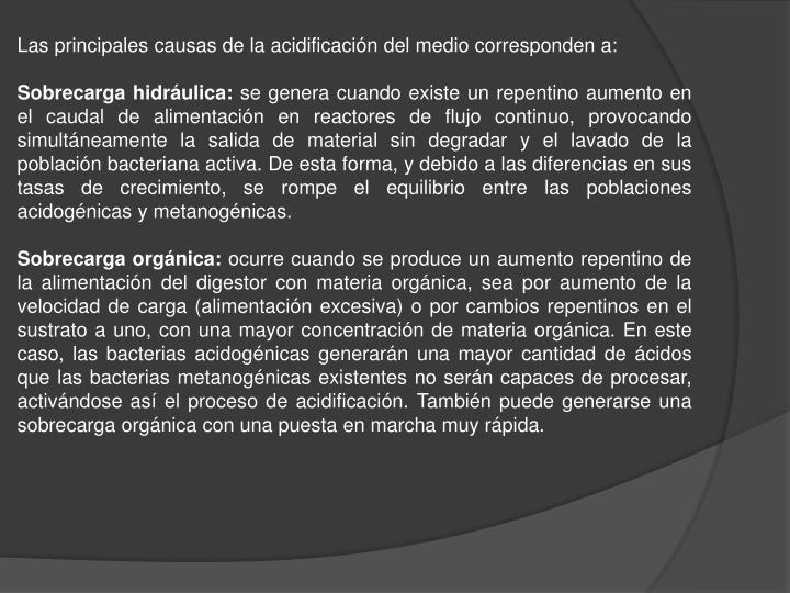 Las principales causas de la acidificación del medio corresponden a: