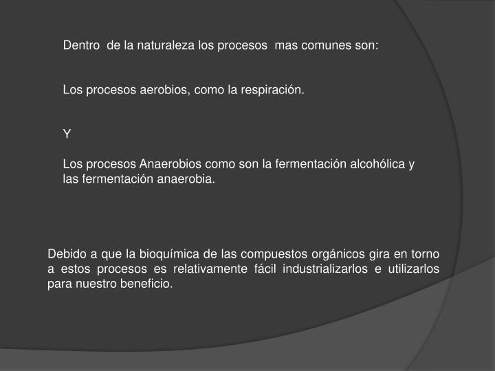 Dentro  de la naturaleza los procesos  mas comunes son: