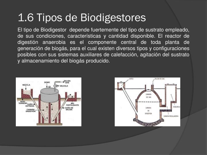 1.6 Tipos de Biodigestores