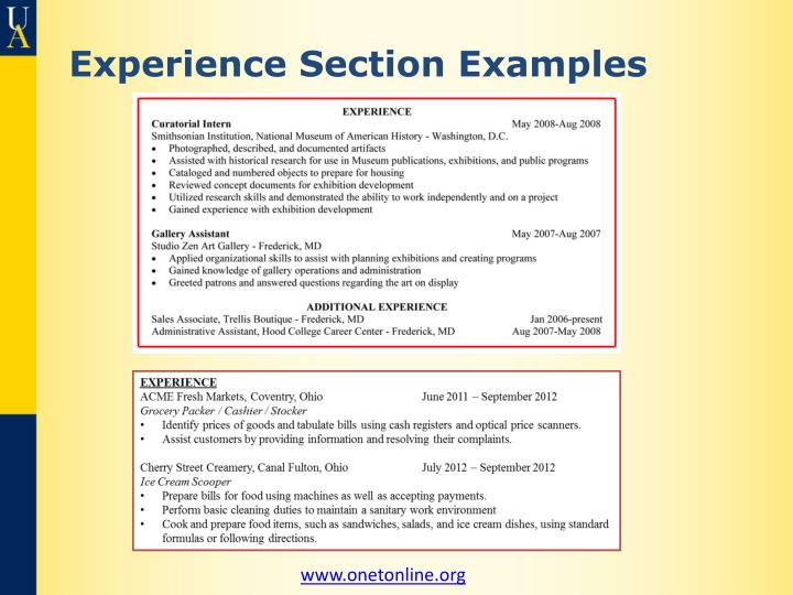 Experience Section Examples