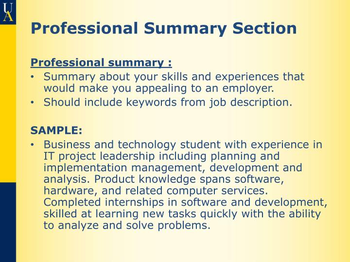 Professional Summary Section