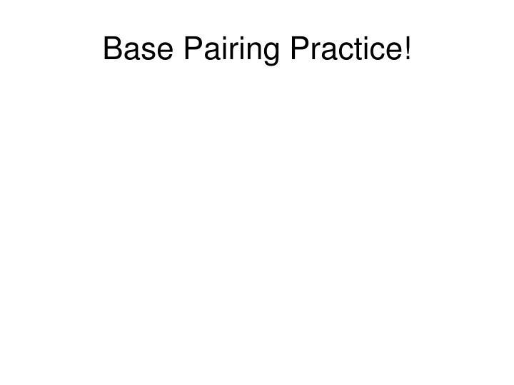 Base Pairing Practice!