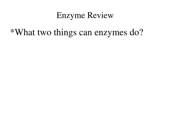 Enzyme Review