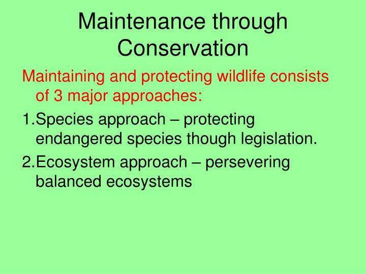 Maintenance through Conservation