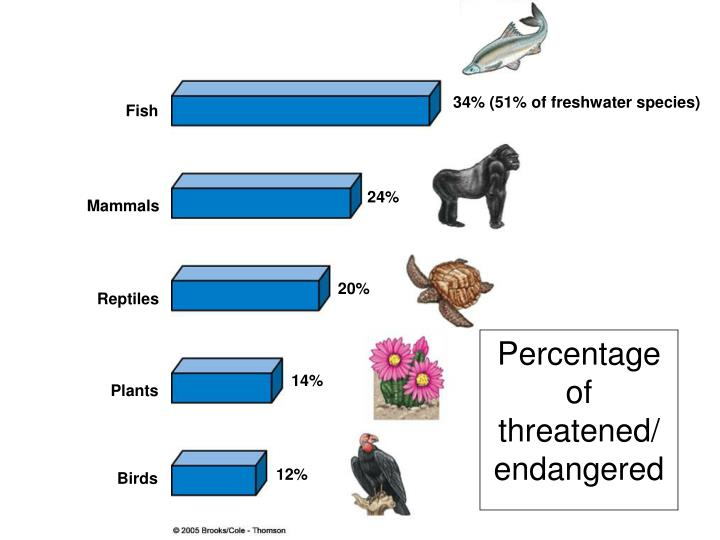 34% (51% of freshwater species)