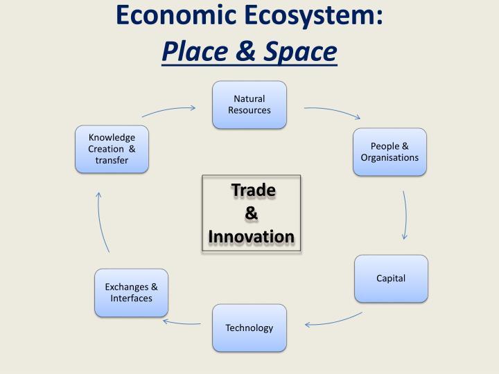 Economic Ecosystem: