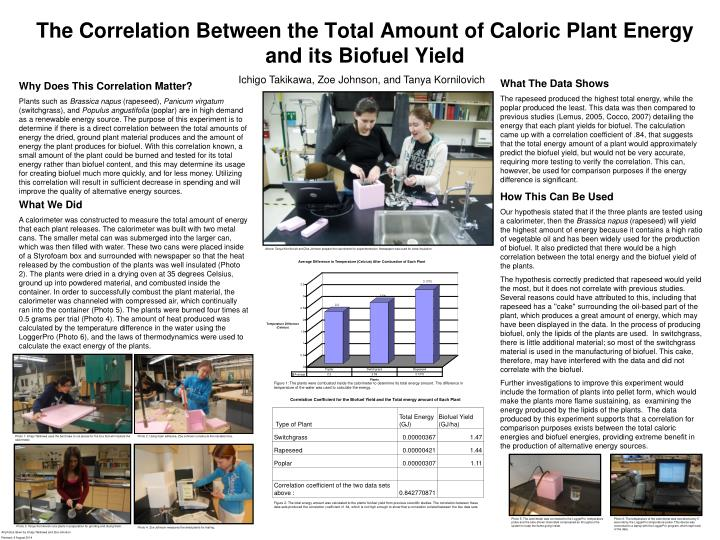 The correlation between the total amount of caloric plant energy and its biofuel yield