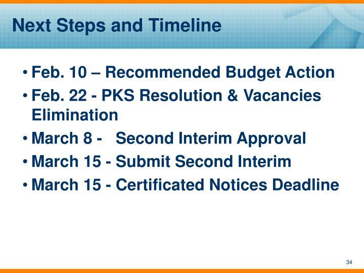 Next Steps and Timeline
