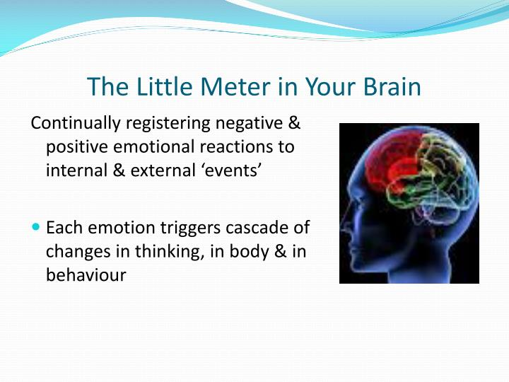The Little Meter in Your Brain