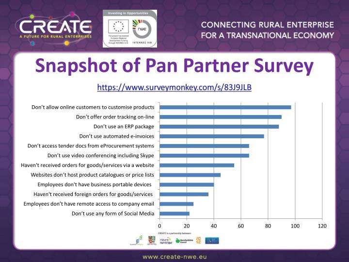Snapshot of Pan Partner Survey