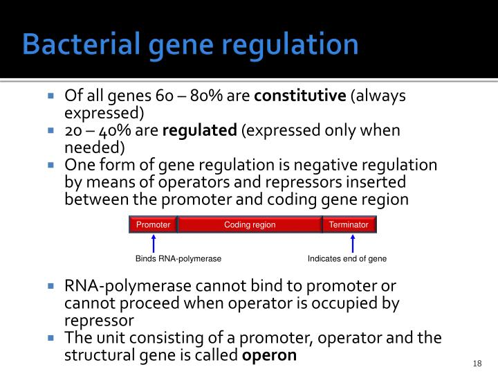 Bacterial gene regulation