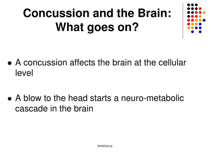 Concussion and the Brain: