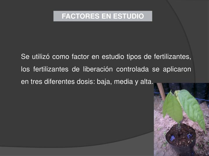 FACTORES EN ESTUDIO