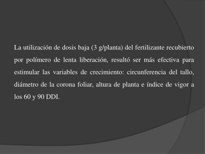 La utilización de dosis baja (3 g/planta) del fertilizante recubierto por polímero de lenta liberación, resultó ser más efectiva para estimular las variables de crecimiento: circunferencia del tallo, diámetro de la corona foliar, altura de planta e índice de vigor a los 60 y 90 DDI.